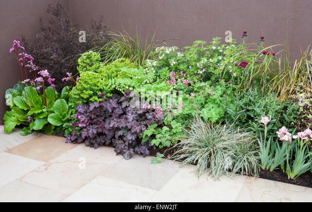 Paved patio stock photos paved patio stock images alamy for Pip probert garden designer