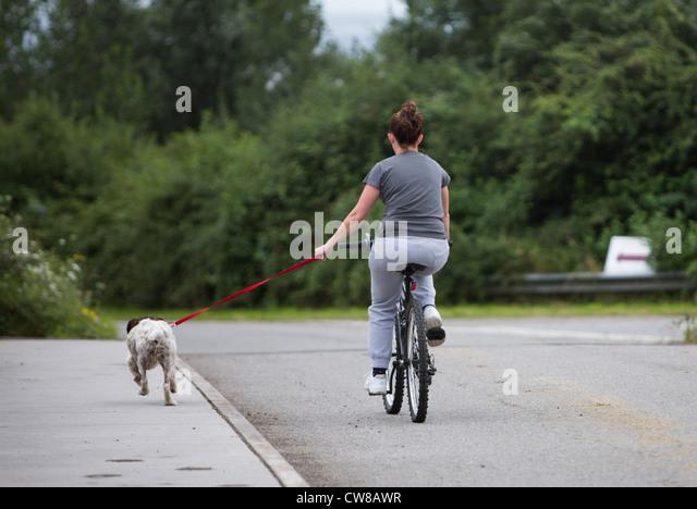 Woman Bike Dog Stock Photos Woman Bike Dog Stock Images Alamy