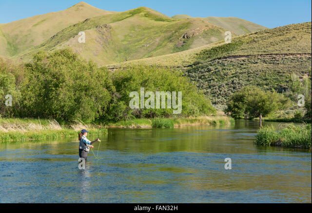 Picabo stock photos picabo stock images alamy for Silver creek idaho fishing