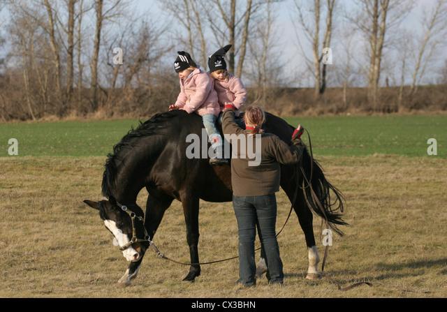 how to turn pair tony hawk ride to pc