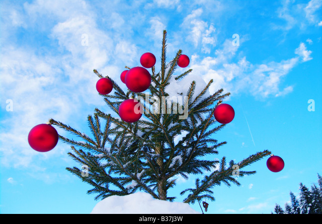 Baubles on christmas tree outside stock photos baubles for Outside christmas baubles