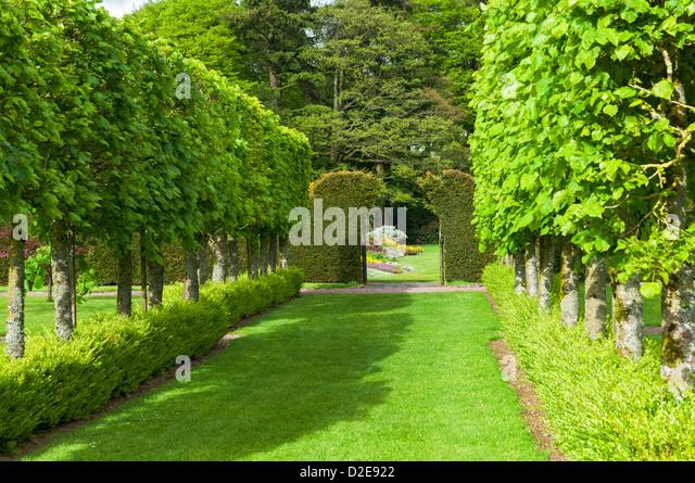 Threave Garden Stock Photos Threave Garden Stock Images
