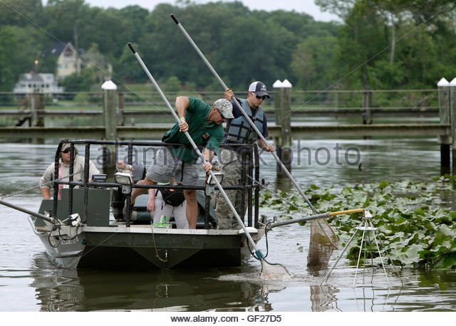 Stunboat stock photos stunboat stock images alamy for Virginia fish and game