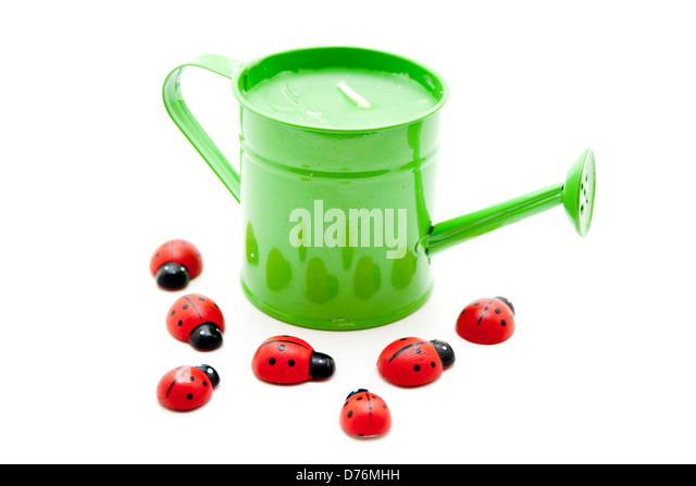 Watering implements stock photos watering implements stock images alamy - Ladybug watering can ...