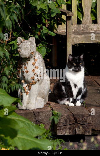 Cat In Garden Next To Stone Cat Statue On Railway Sleepers   Stock Image