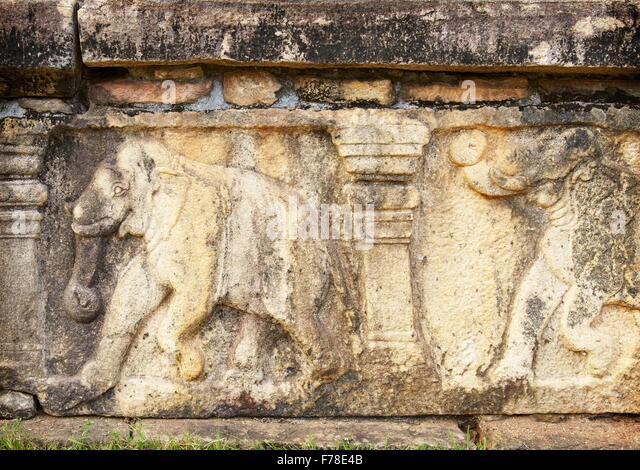 Sri lanka temple elephant carving stock photos