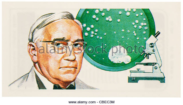 Alexander fleming research paper