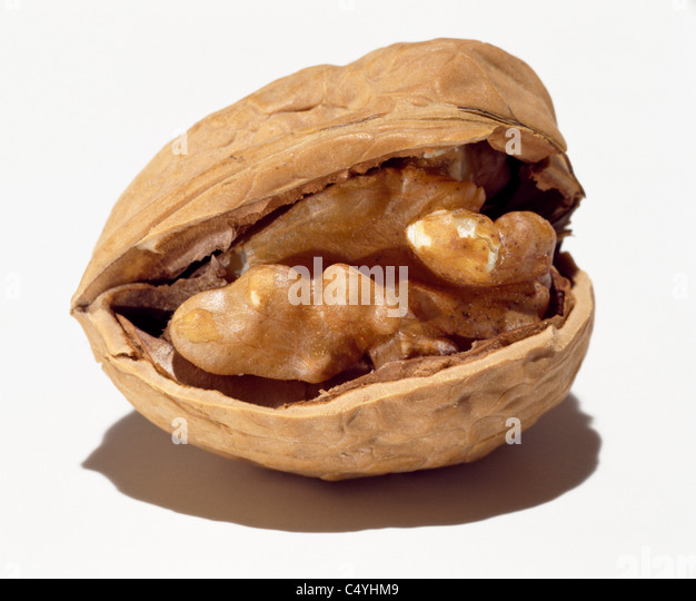 Empty walnut shell