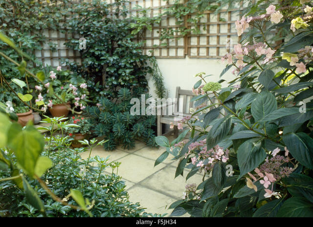 Basement garden stock photos basement garden stock - The well tended perennial garden ...