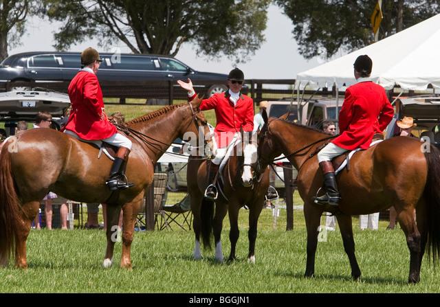 escorts in foxfield co
