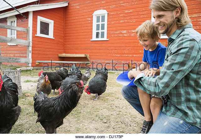Farm Stock Photos & Farm Stock Images - Alamy
