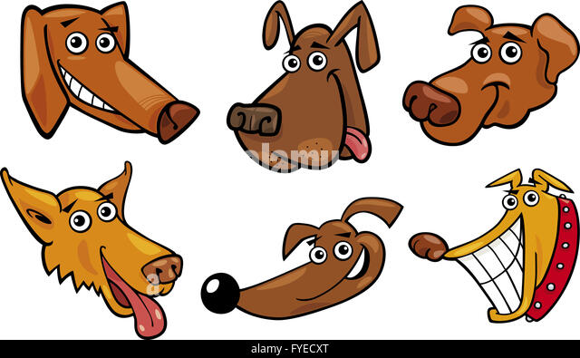 Dogs heads stock photos images alamy