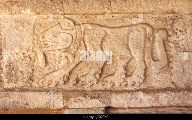 Bas-relief carving of a jaguar, pre-Columbian Maya civilization, Tula de Allende, Hidalgo state, Mexico - Stock Image
