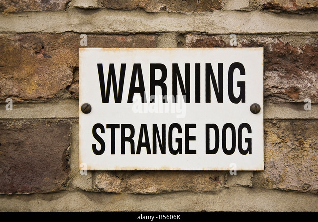 Nos p'tites bestioles a 4 pattes Humorous-sign-on-wall-warning-of-strange-dog-b5606k