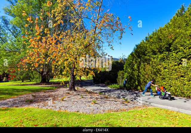 Autumn adelaide hills mt lofty stock photos autumn for Adelaide hills landscape