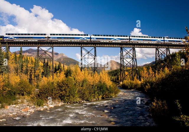 Railroad train and holland america s mckinley explorer crosses alaska