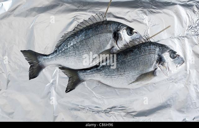Aluminum foil stock photos aluminum foil stock images for Tin foil fish
