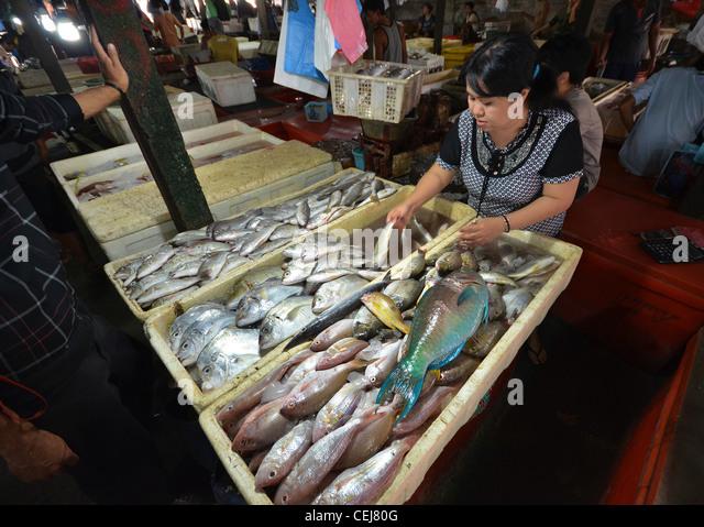 Jimbaran fish market stock photos jimbaran fish market for Local fish market