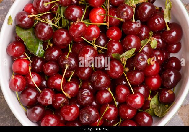 Prunus cerasus stock photos prunus cerasus stock images alamy - Romanian cherry tree varieties ...
