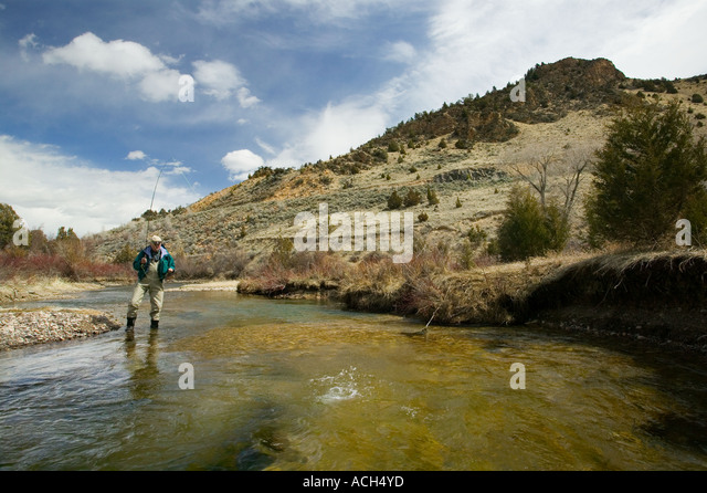 Beaverhead stock photos beaverhead stock images alamy for Beaverhead river fly fishing