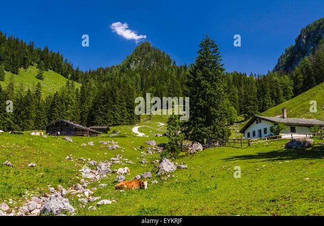 Hut Brook Stock Photos & Hut Brook Stock Images - Page 3 - Alamy