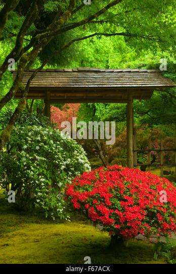 Japanese teahouse garden stock photos japanese teahouse for Outer garden
