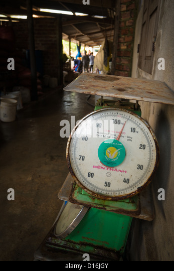 Fish measure stock photos fish measure stock images alamy for Fish weight scale