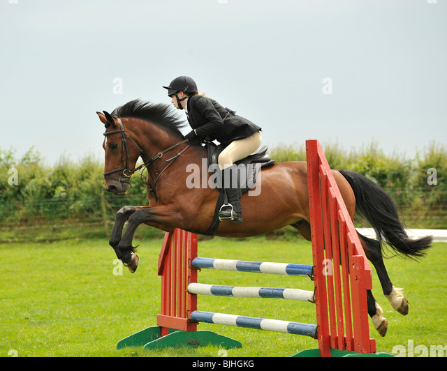 Show Jumping Stock Photos & Show Jumping Stock Images