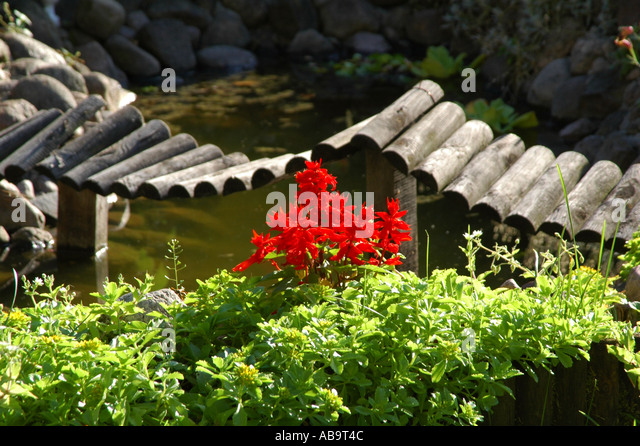 Decorative bridge stock photos decorative bridge stock for Decorative fish pond bridge