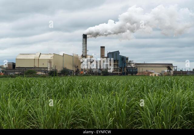 Sugar Cane Factory Stock Photos & Sugar Cane Factory Stock ...