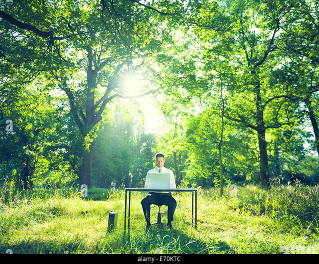 Office Woods Stock Photos Office Woods Stock Images Alamy