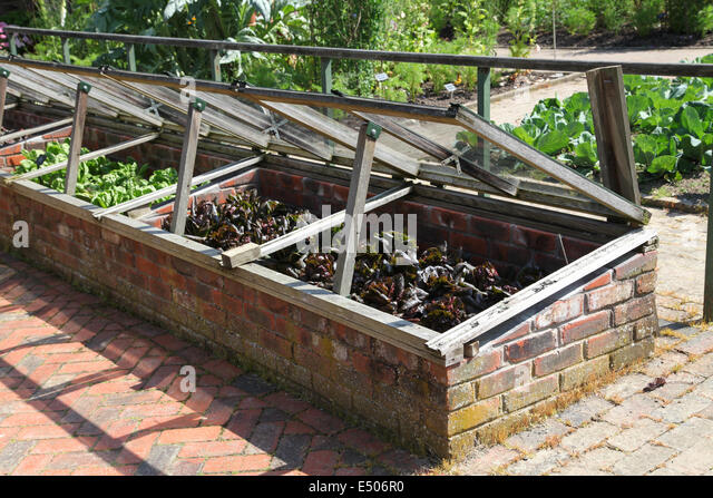 cold frames stock image