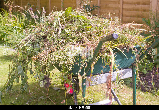 how to clear a garden full of weeds