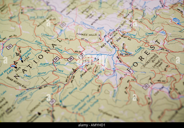 Paper Map Of National Forest Lands With Roads Oregon State Usa Stock Image