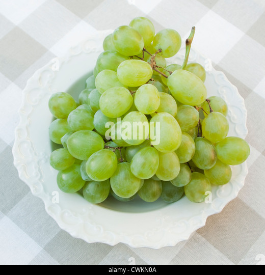Table grape vineyard stock photos table grape vineyard for Table grapes