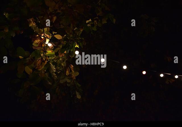 Fairy lights outdoors stock photos fairy lights outdoors stock outdoors lights and leaves stock image aloadofball Gallery