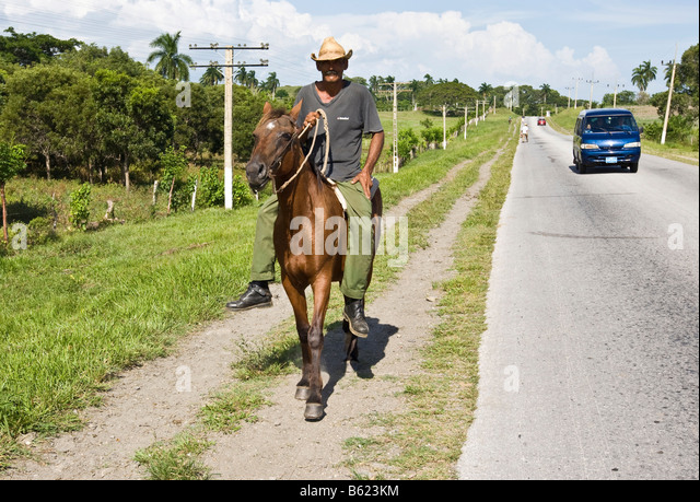 Horse In Latin Horseback Ride Cuba St...