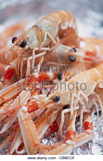 how to cook dublin bay prawns