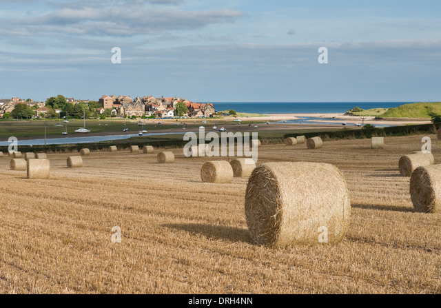 Alnmouth Stock Photos Amp Alnmouth Stock Images Alamy