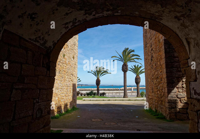 paphos jewish singles Find a great range of majorca holidays in 2018/2019 with easyjet holidays click here for offers and book online.