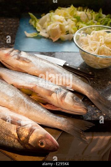 Sea bass uk stock photos sea bass uk stock images alamy for Bass fish cooking