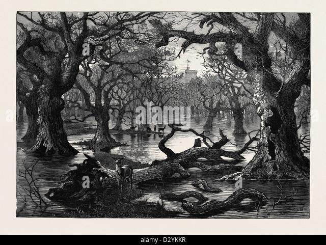 THE THAMES FLOODS SCENE IN HOME PARK WINDSOR 1879