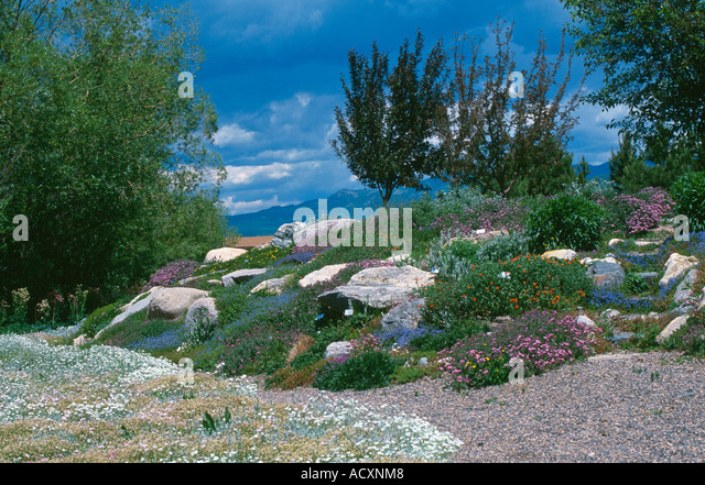 Rochies Stock Photos Rochies Stock Images Alamy