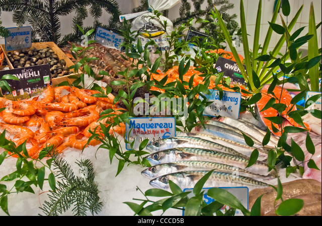 Langustine stock photos langustine stock images alamy for Fish meal for sale