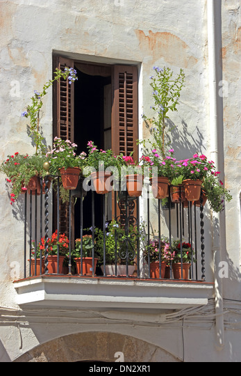 Balcony plants not flower not flowers stock photos for Plants for apartment balcony