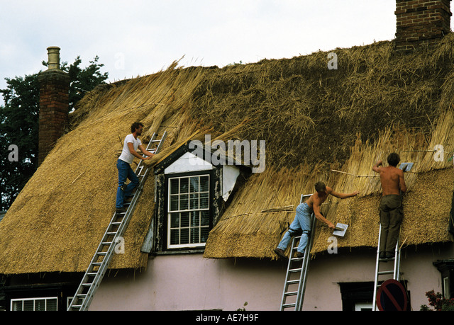 Bundles Of Norfolk Reed Being Fashioned Into A Thatched Roof Excellent  Insulation But A Fire Risk