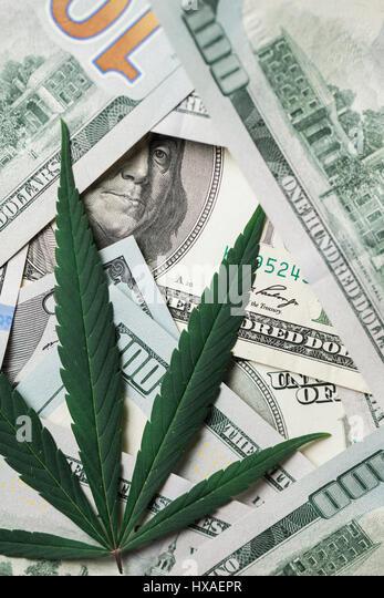 Marijuana Leaves On American Dollar