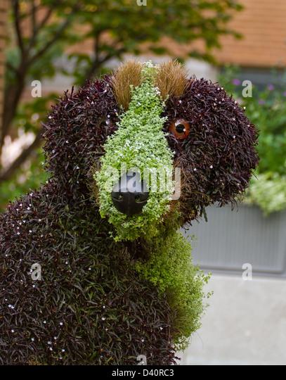 Giant Dog Floral Sculpture In Botanical Garden Montreal   Stock Image