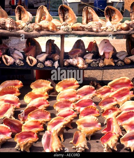 Market caribbean bahamas stock photos market caribbean for Bahamas fish market
