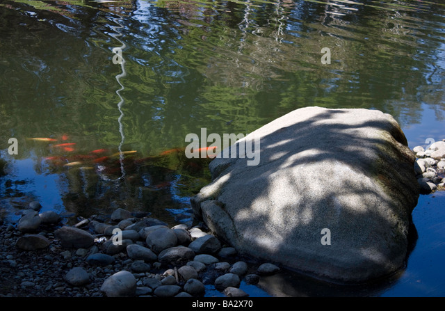 Turlock Stock Photos Turlock Stock Images Alamy